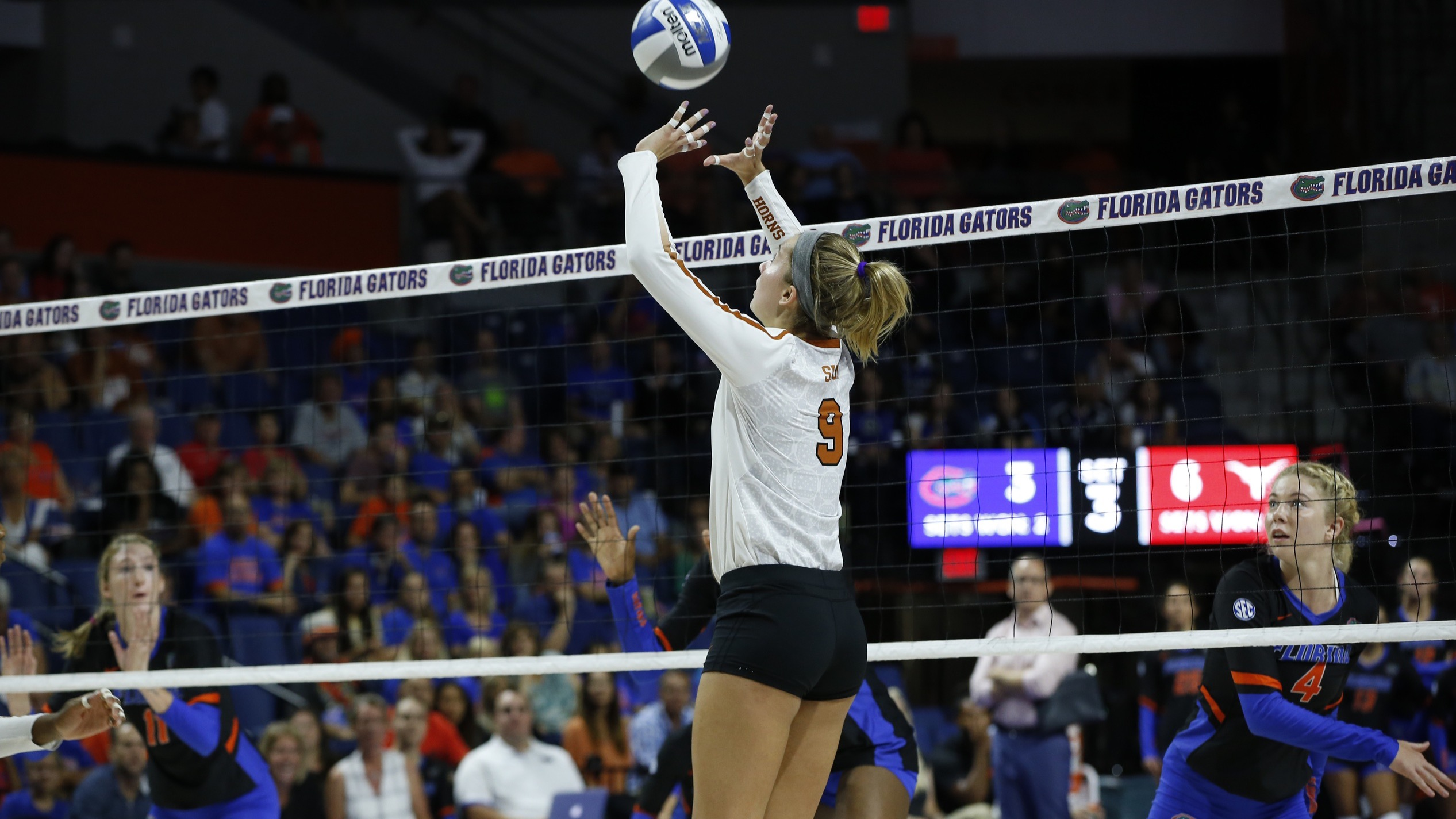 Ashley Shook texas volleyball
